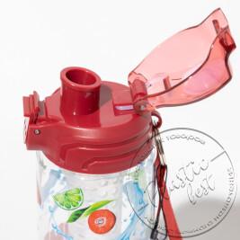 """Пляшка для пиття DETOX декор """"Турція""""TP-229 (700мл.)(з колбою) ш.к. (20шт.)"""